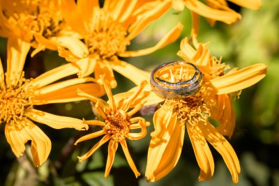Yellow flower with wedding rings on them bright sun