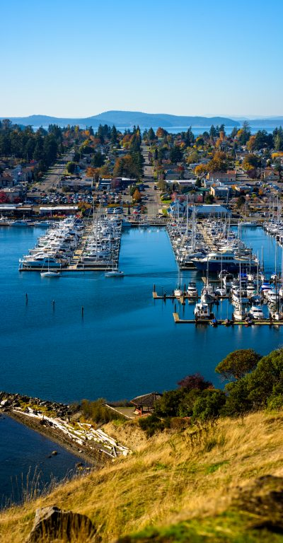 Landscape vertical panorama of Anacortes WA marina skagit valley